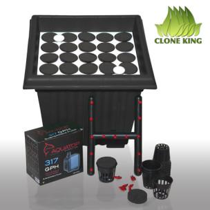 Clone King 25