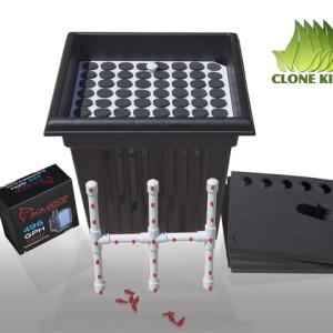 Clone King 64